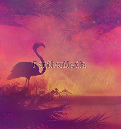 flamingo on tropical peaceful sunset
