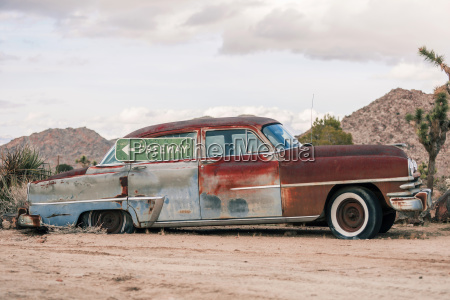 usa california joshua tree oldtimer with