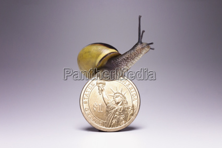 snail on top of one us