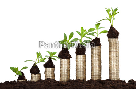 saplings on stack of coins