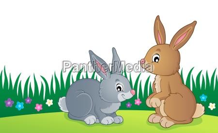 rabbit topic image 6