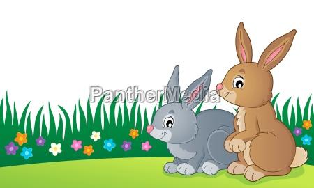 rabbit topic image 7