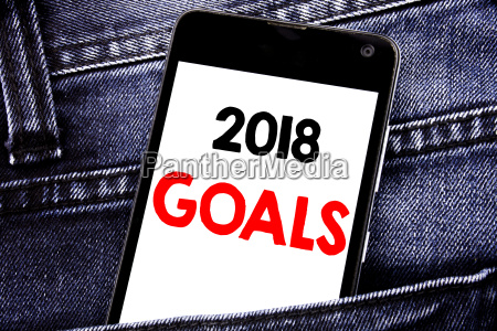 writing text showing 2018 goals business