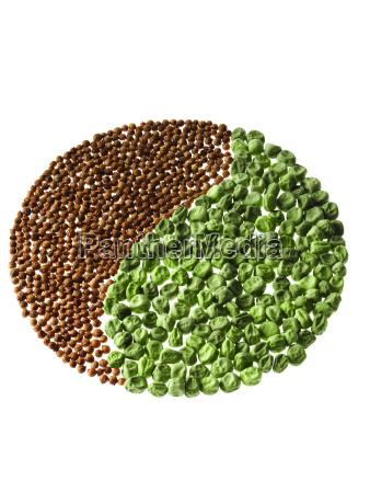 essen nahrungsmittel lebensmittel nahrung abmachung model