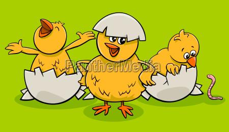 karikatur kleine kueken aus eiern schluepfen