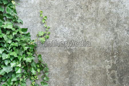 background with gray plastered wall and