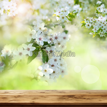 wooden table with spring blossoms