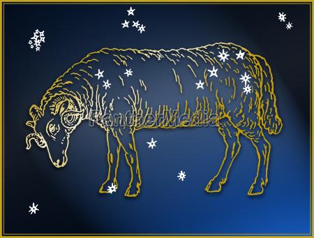 blau kunst tier nachthimmel horizontal astrologie