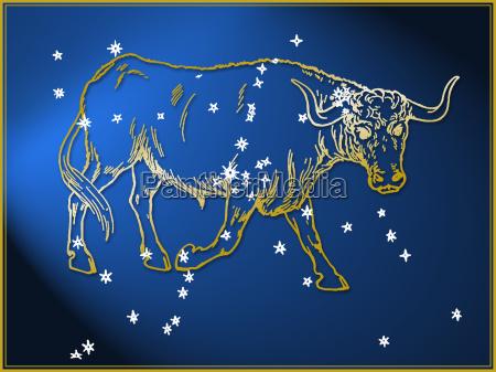 stier astrologisches zeichen