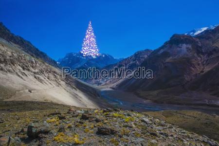 entfernter weihnachtsbaum auf dem berg