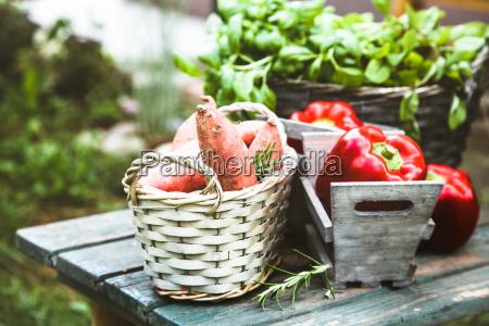 fresh vegetables on wood