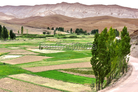 landscape view of the fields of