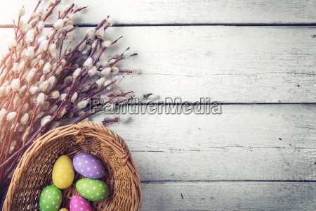 easter background pussy willows with