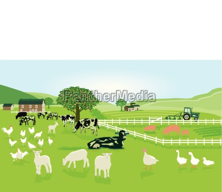 farming with animals in the pasture