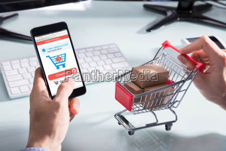 person shopping online auf handy