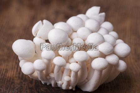 shimeji mushrooms on dark wood