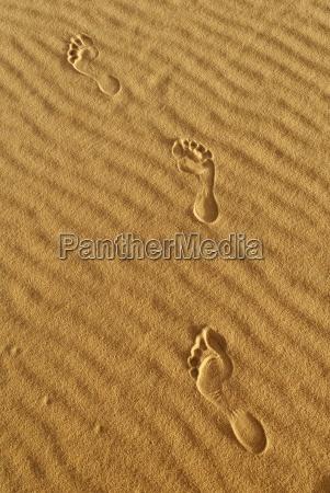 fussspur im sand sahara