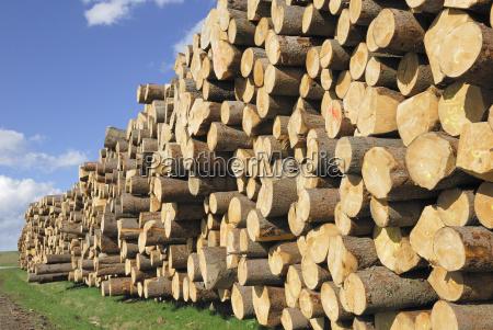 fichtenstamme lumber camp near viechtach bavarian