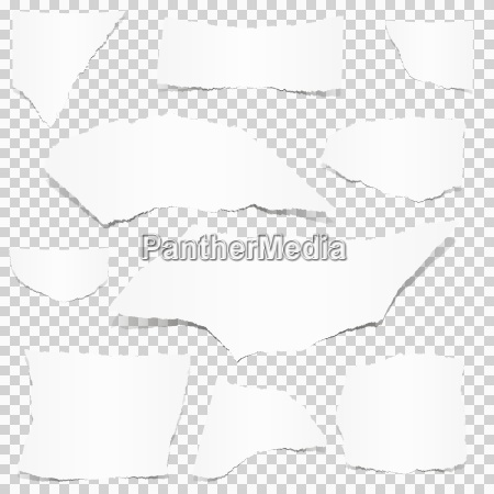 collection of white paper scraps