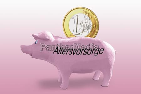 rosa sparschwein mit euro und aufschrift