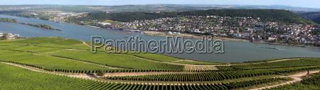 panoramablick vom niederwalddenkmal uber die weinberge