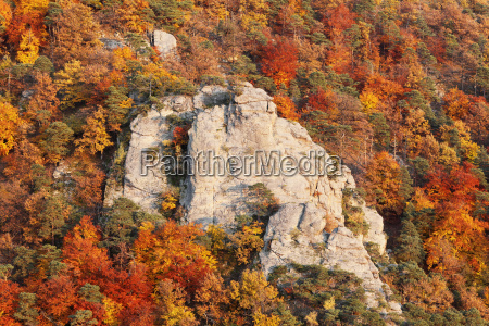 rocks and mixed autumn forest in