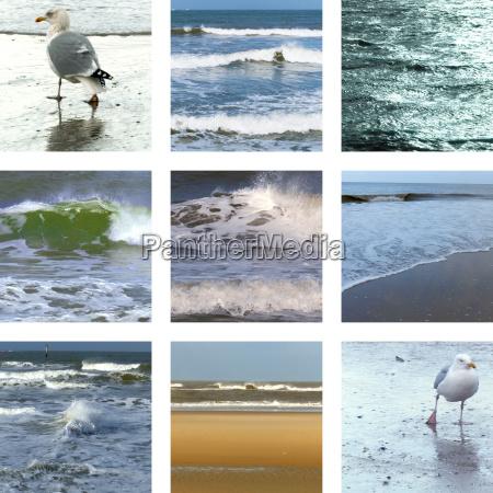 neun bilder vom strand mit wellen