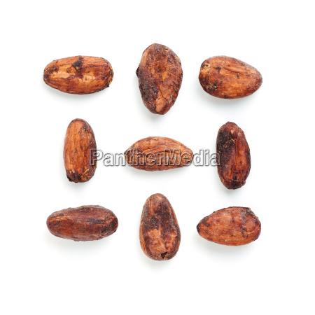 rohes kakaobohne und schokoladenstueck lokalisierte weiss