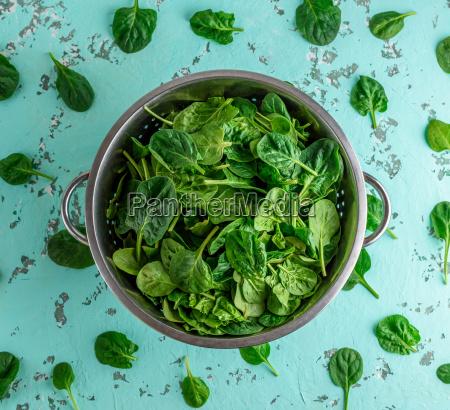 gruener spinat verlaesst in einem eisensieb
