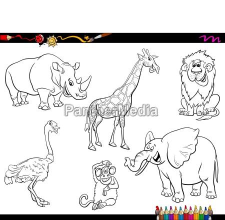 safari cartoon animal characters coloring book