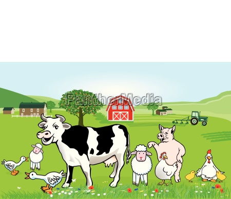 farm animals illustration funny cartoon