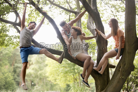 two young couples sitting in tree