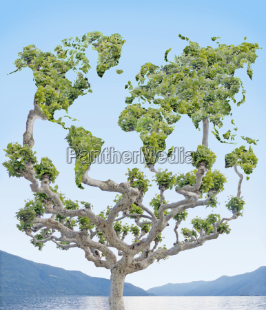 tree with leaves forming shapes of