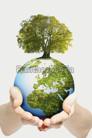 environmental concept as hands hold globe