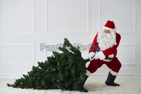 weihnachtsmann zieht weihnachtsbaum