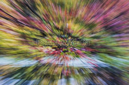 horizontal lila outdoor freiluft freiluftaktivitaet im