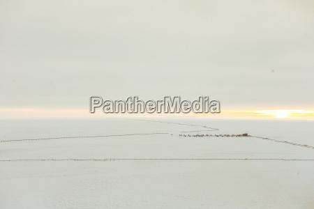 umwelt horizont winter feld usa metall