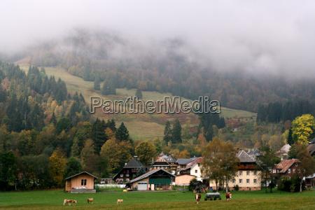 bauernhof im suedschwarzwald bei bernau