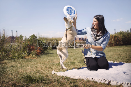 woman giving frisbee to playful dog