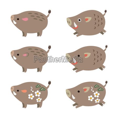 chinese zodiac animal cute boar wild