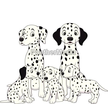 familie der dalmatinischen hunde