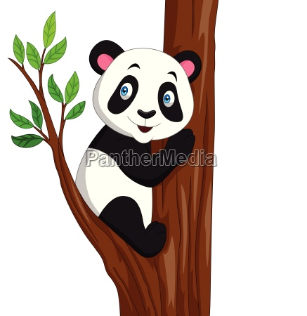 cartoon panda climbing a tree