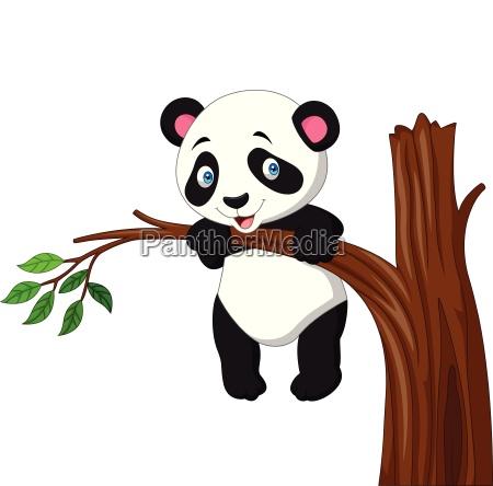 cartoon funny panda hanging on the
