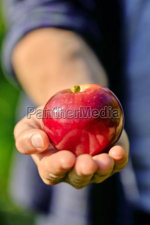 essen nahrungsmittel lebensmittel nahrung hand maennlich