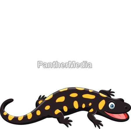 cartoon happy salamander