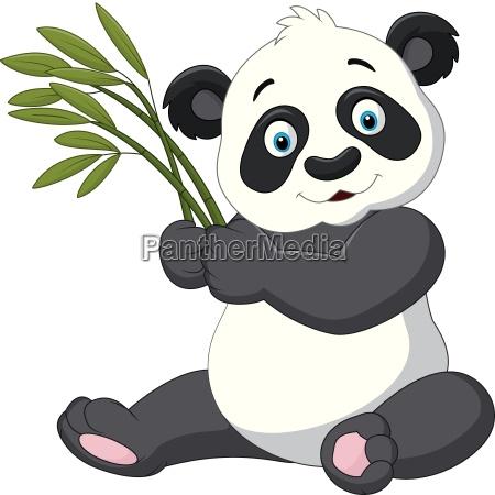 niedlicher panda haelt bambus