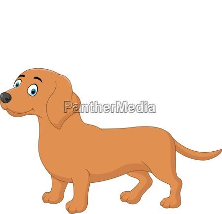 cartoon happy dackel hund