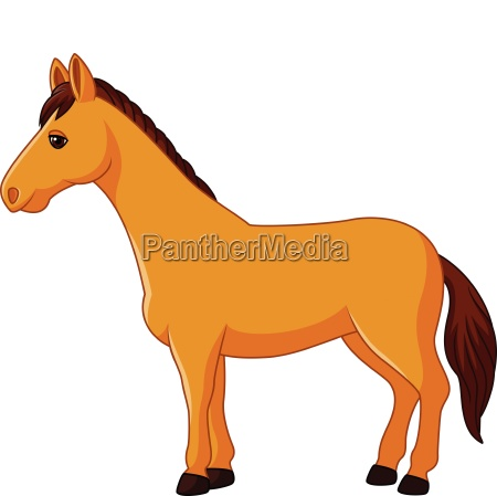 cartoon horse character isolated on white