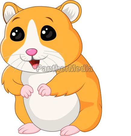 cute hamster posing isolated on white