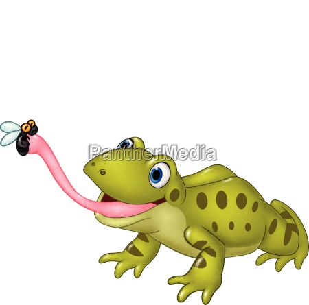 cartoon funny frog catching fly isolated